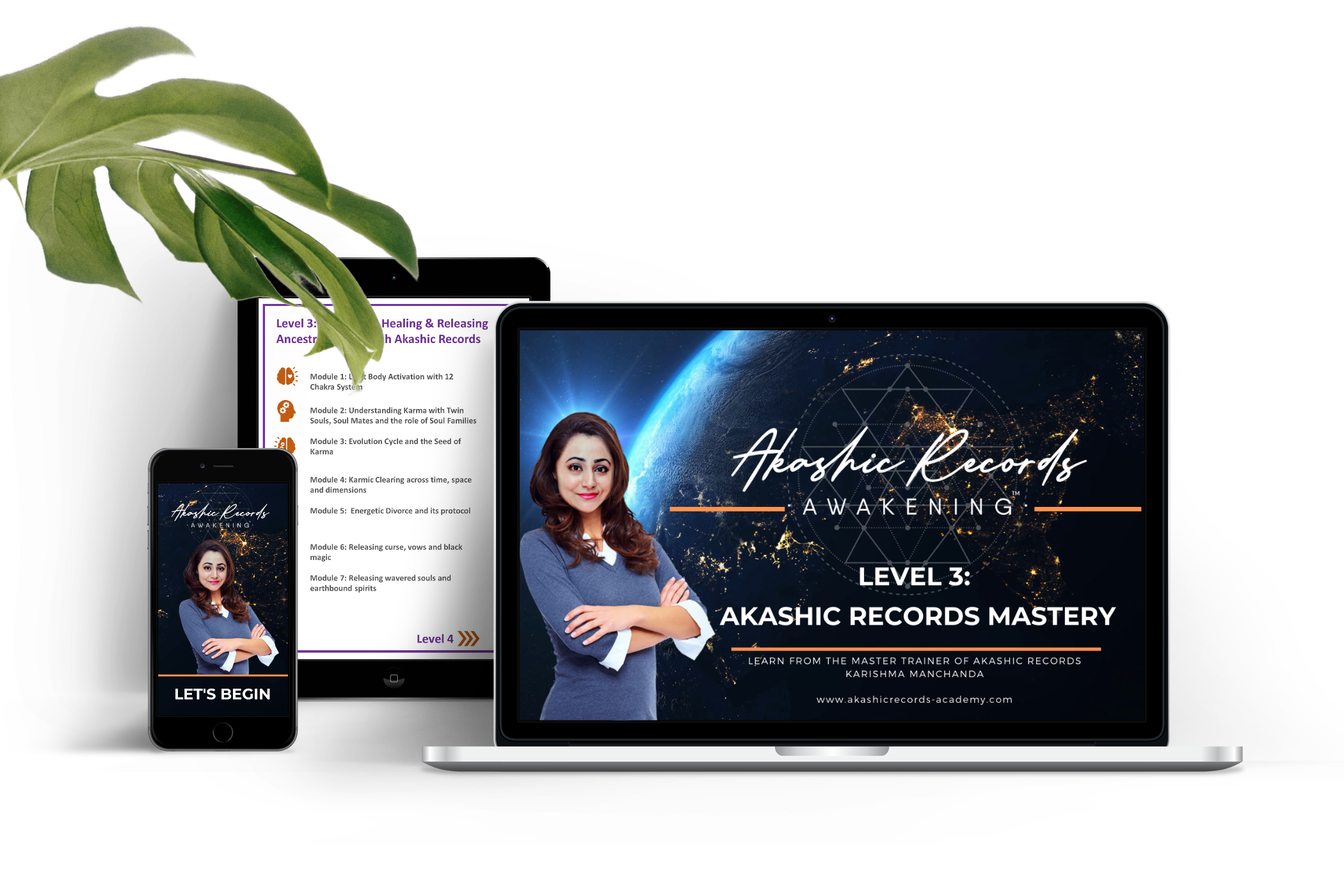 Level 3: Akashic Records Mastery